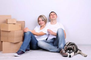 Tips on How to Move to London With Pets
